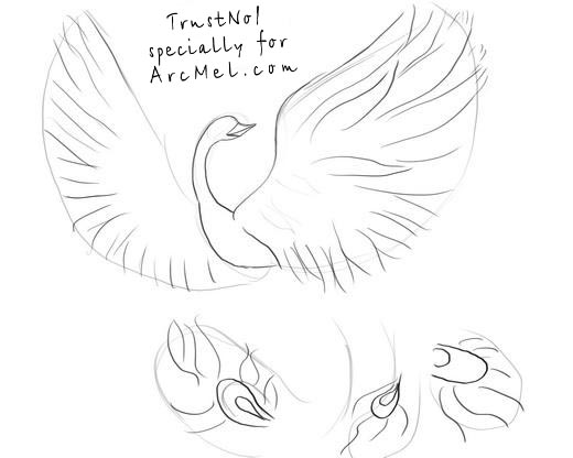 Phoenix Drawing Step By Step