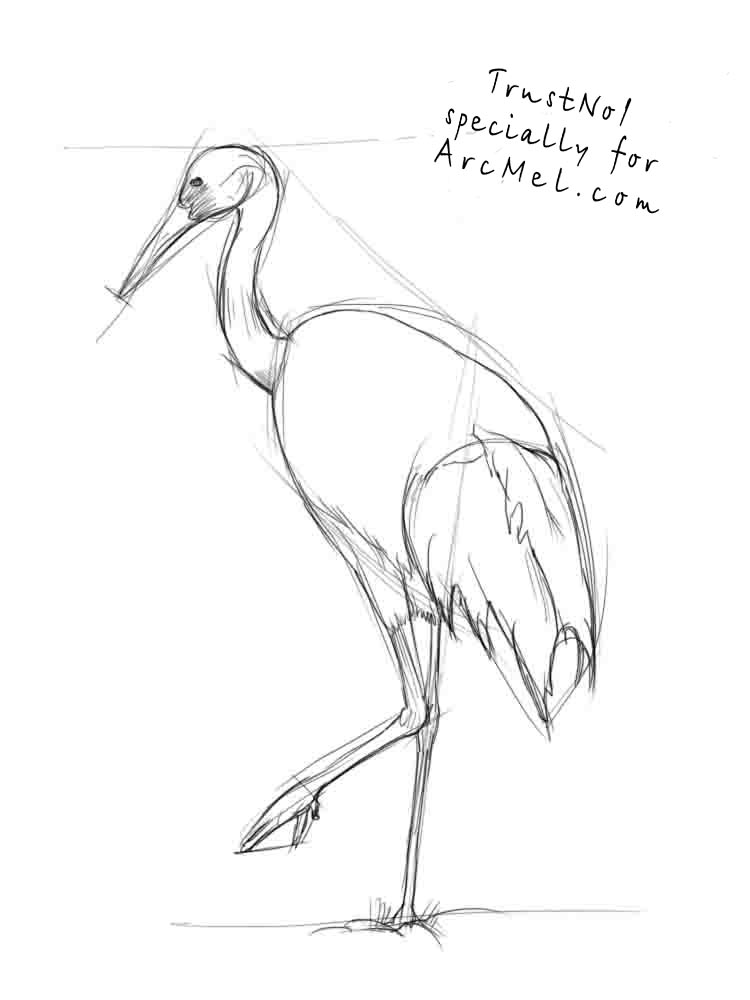how to draw a crane step by step