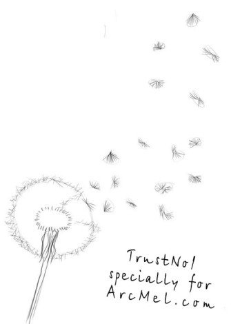 How to draw a dandelion step 2