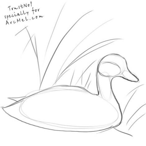How to draw a duck step 2