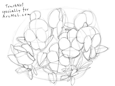 How to draw pansies step 2