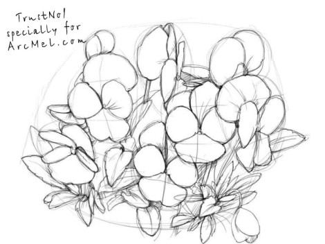 How to draw pansies step 3