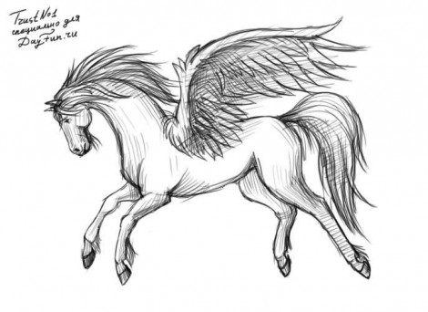 How to draw Pegasus step by step 4