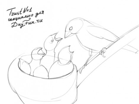 how to draw a nest step by step 2