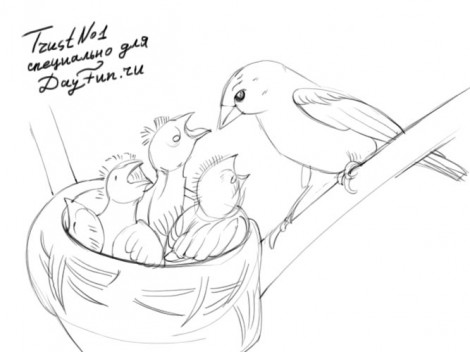 how to draw a nest step by step 3