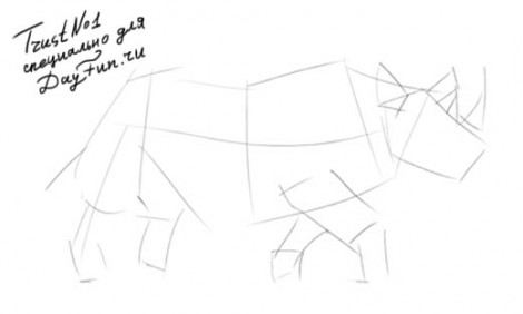 How to draw rhino step by step 1