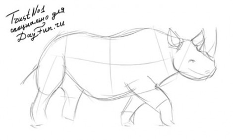 How to draw rhino step by step 2