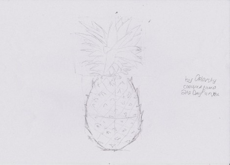 how to draw a pineapple step by step 4