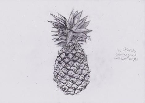 how to draw a pineapple step by step 6