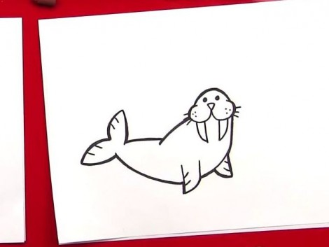 How To Draw A Walrus.mp4_20150925_225336.186