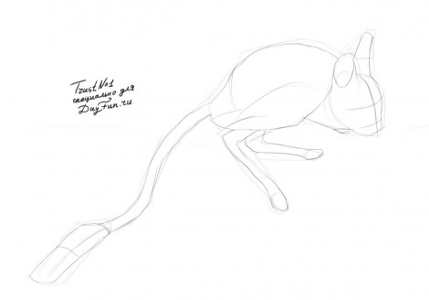 how to draw a jerboa step by step 2