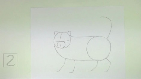 How to Draw a Cat (Persian) 2
